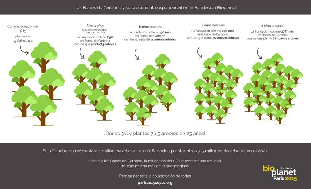 Infografia Bono Carbono