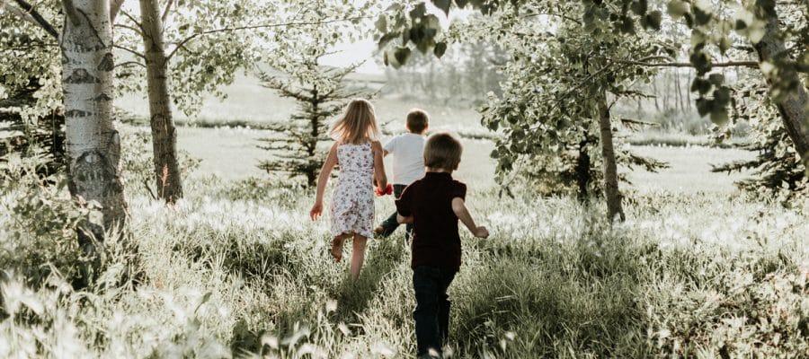 Familia planta arboles futuro